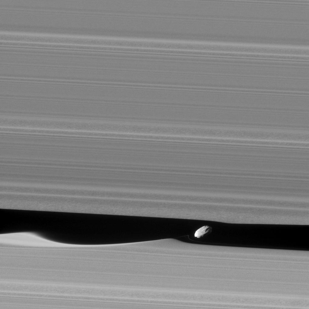Daphnis_Saturnus_Aring